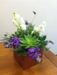 Purple centerpiece succulent